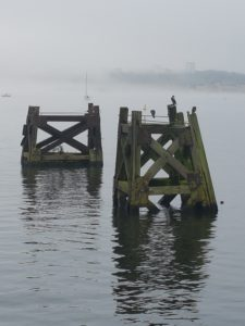 Misty morning on Cardiff Bay