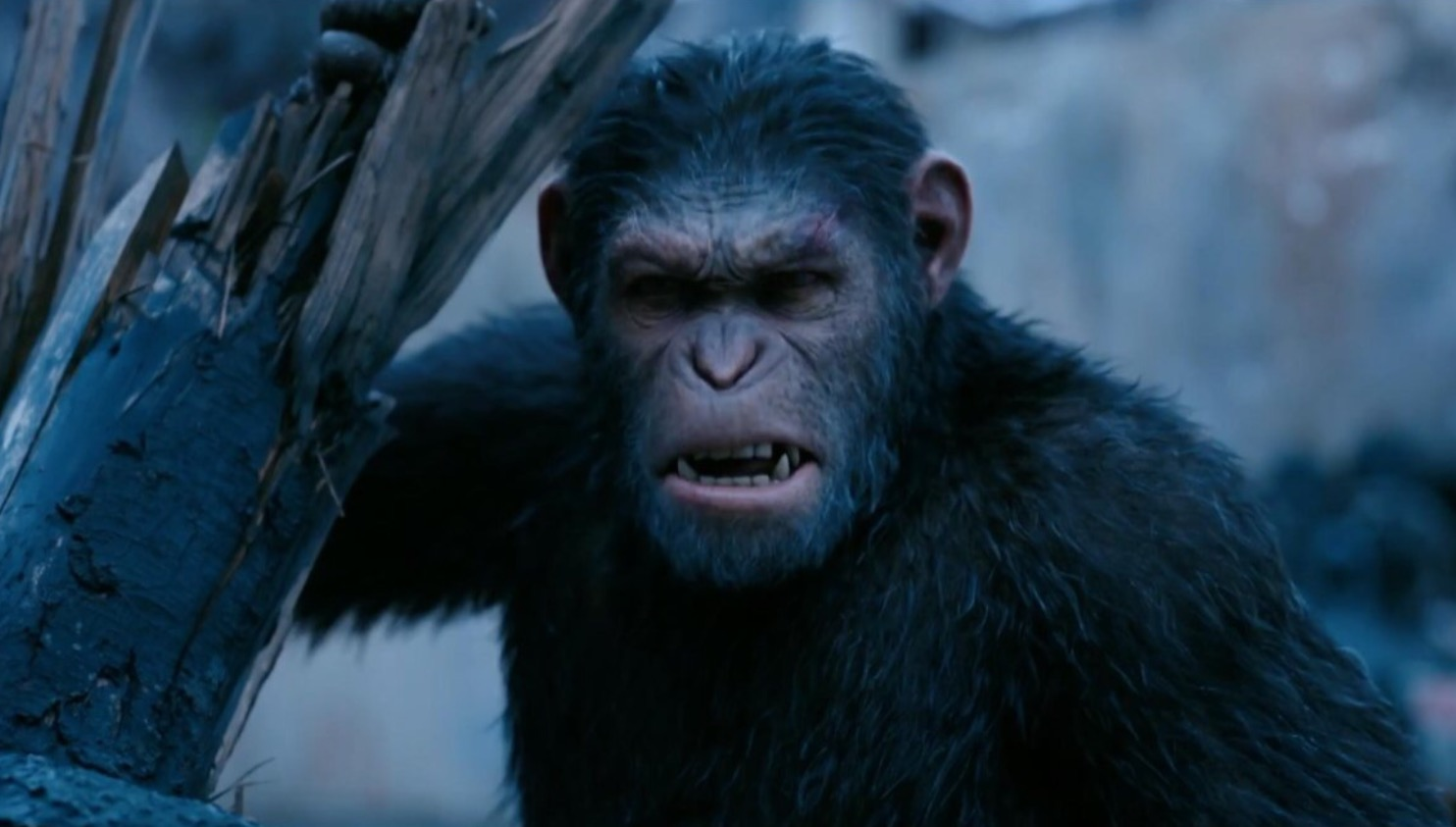 Caesar (Andy Serkis) in War for the Planet of the Apes